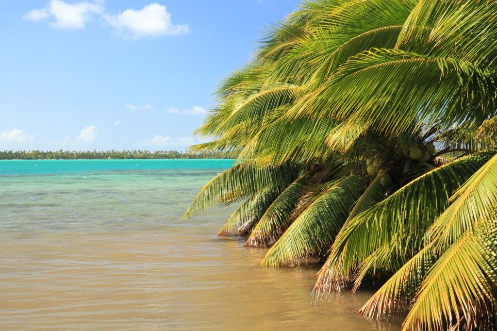 Sänna - Tahiti