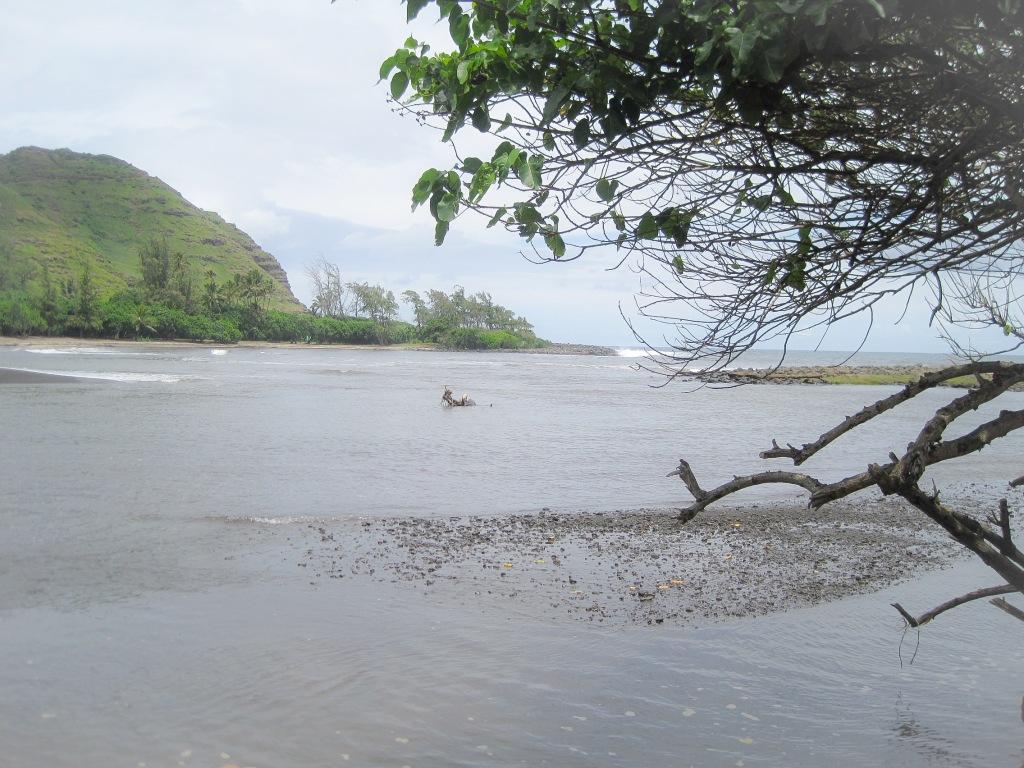 Sänna - The Big Island