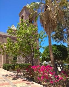 San Jose Cabos SV Sänna