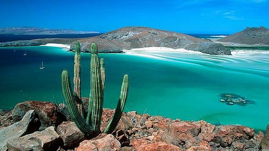 Sänna - Mexico, Sea of Cortez