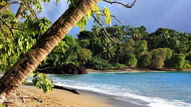Sänna - Drake Bay, Costa Rica